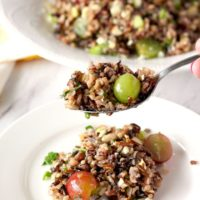 Spoonful of Wild Rice Salad Salad with Citrus Miso Vinaigrette shown. In the background a bowl of Wild Rice Salad
