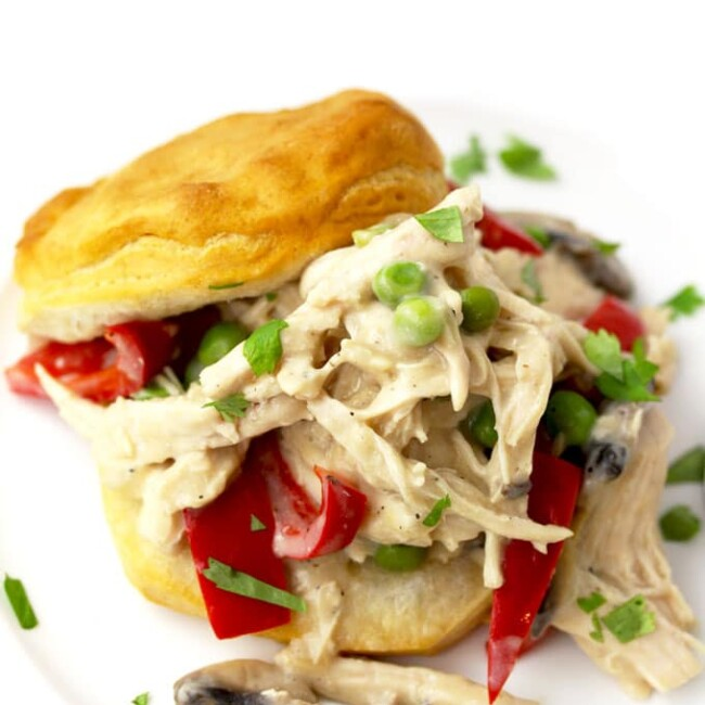 Close up top view of a serving of creamy Chicken A la King with red bell peppers, mushrooms and green peas scooped between a biscuit cut in half on a white plate sitting on a wooden surface.