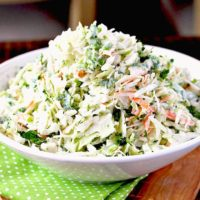 Creamy coleslaw pile up high on a white bowl