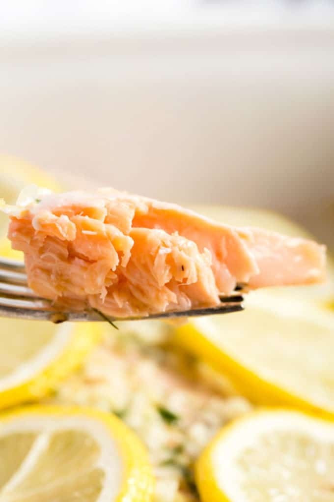 A piece of flaky salmon on a fork.