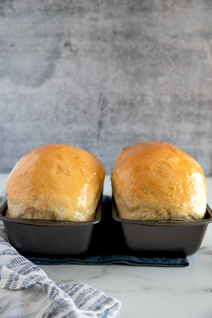 Two loaves of butter top white sandwich bread in loaf pans.