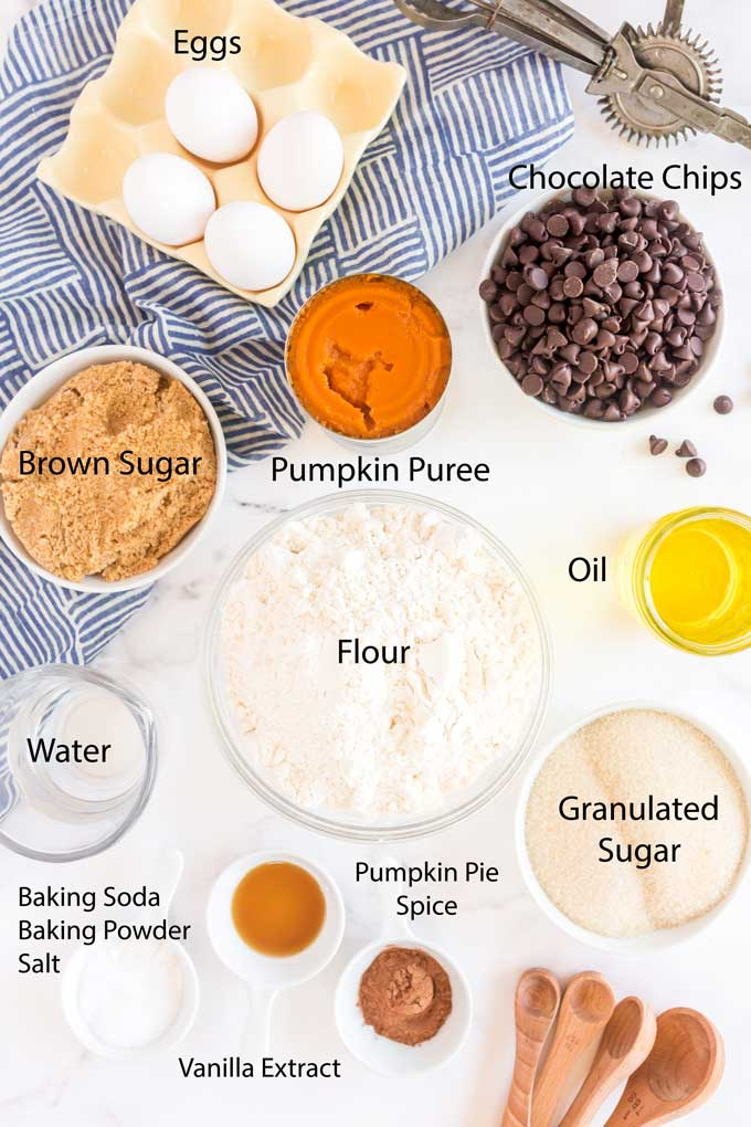 Ingredients to make pumpkin bread with chocolate chips.