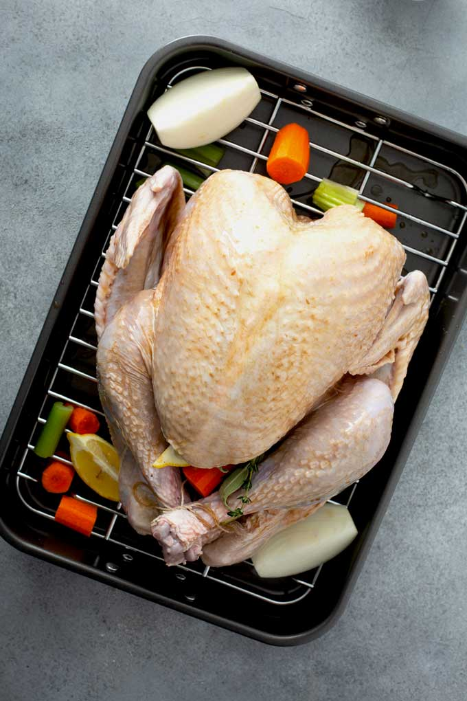 Seasoned and trussed turkey in a roasting pan
