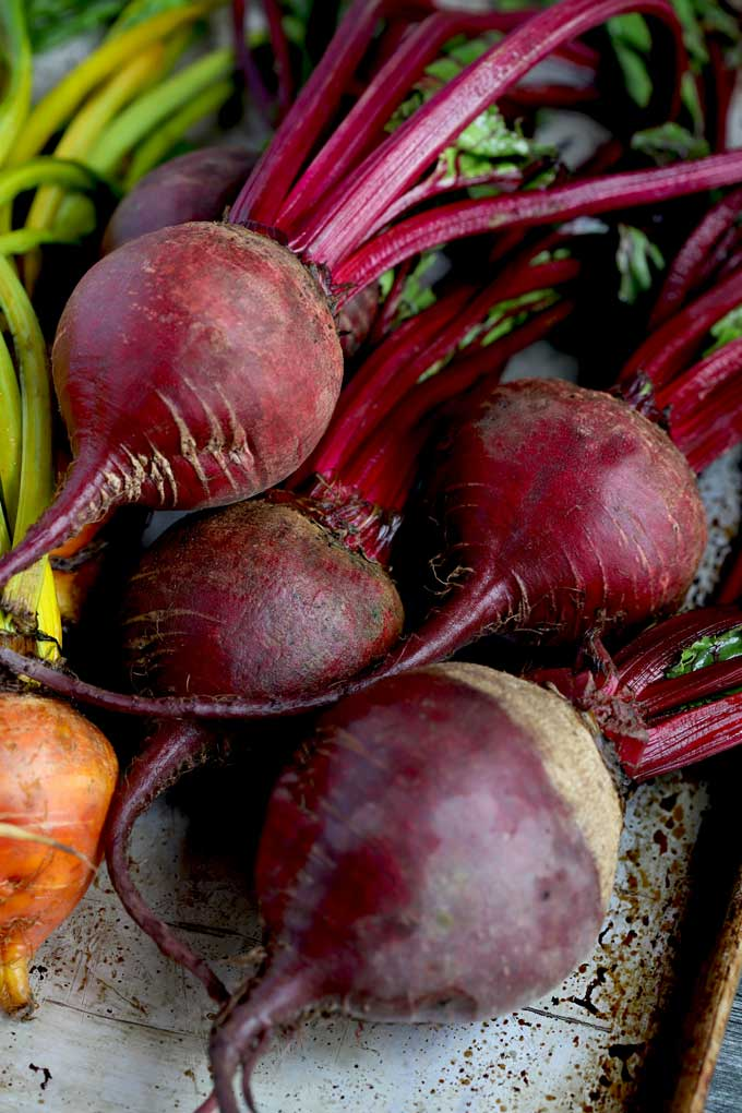 Raw red beets on a metal surface