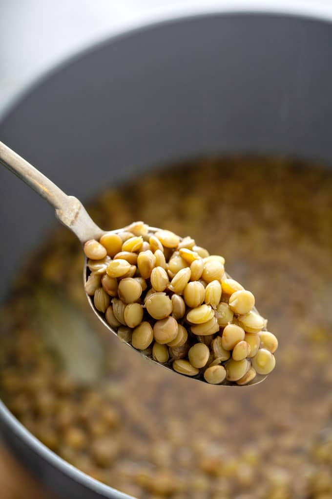 A spoonful of cooked brown lentils lifted from a cooking pot