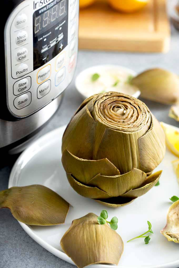 Cooked whole artichoke globe on a white plate next to a pressure cooker.
