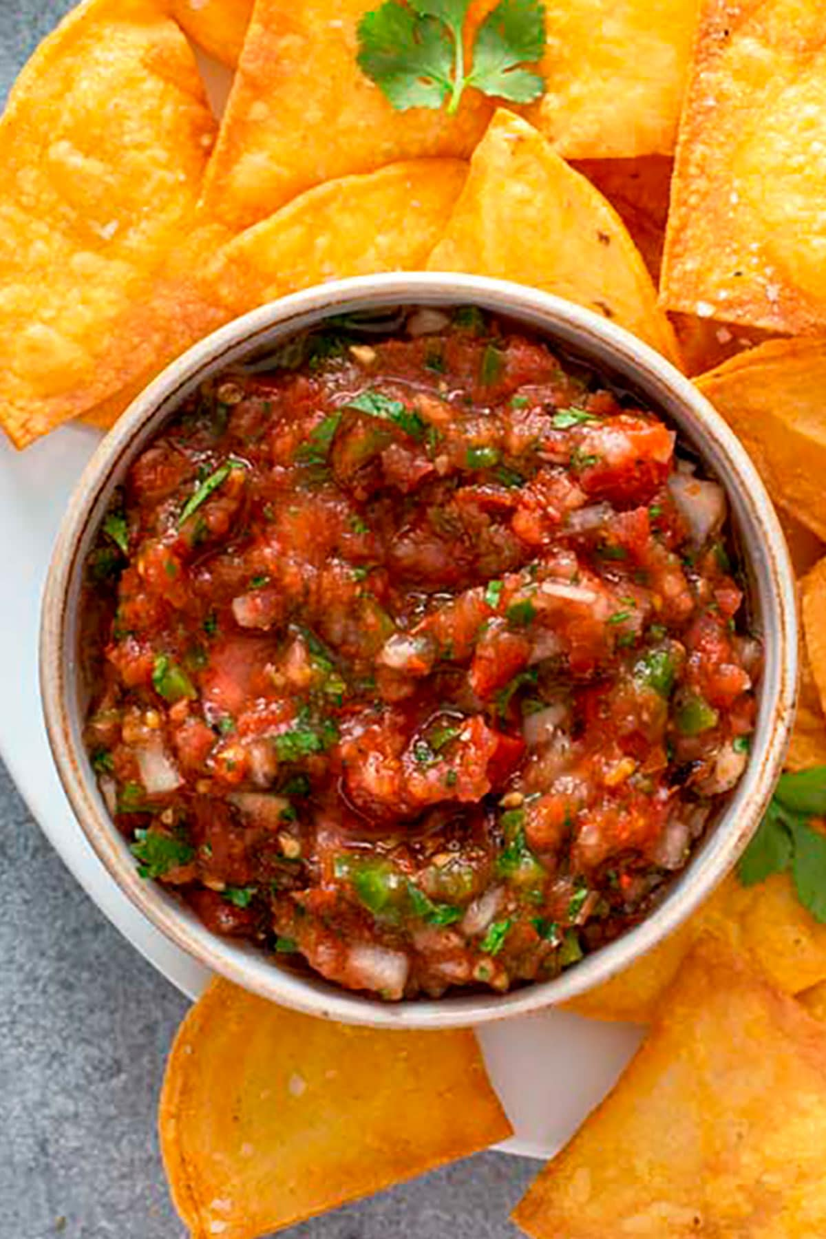Chips and salsa on a white plate