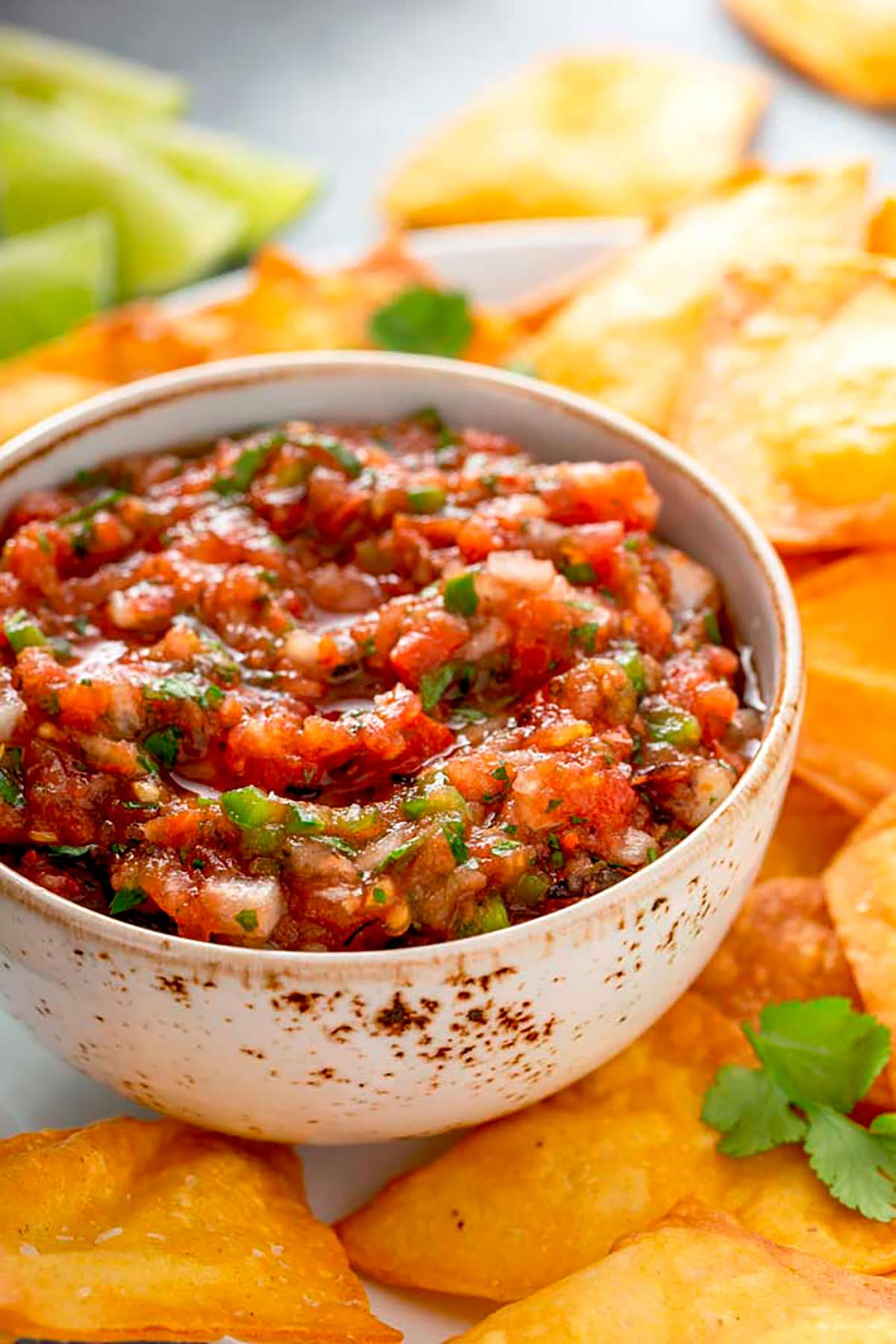 A bowl of Mexican salsa with chips