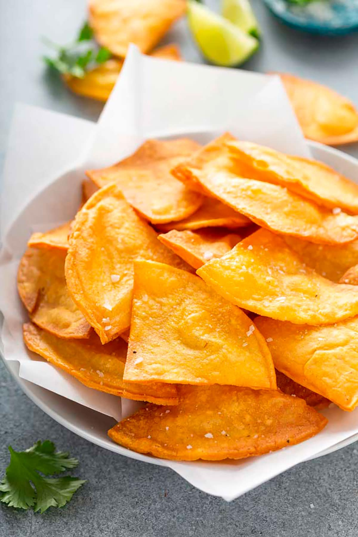 Crispy tortilla chips in a white bowl.