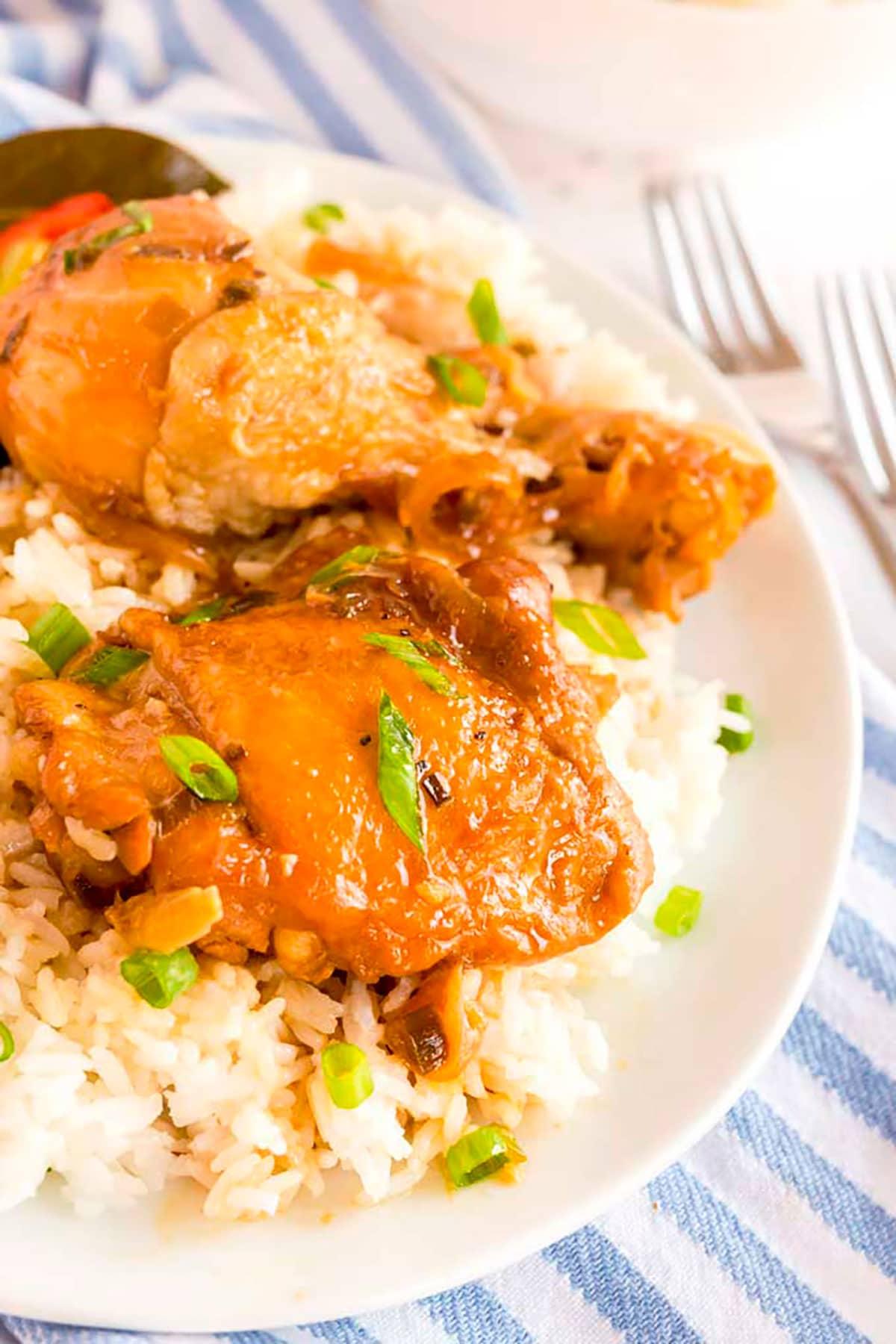 Filipino chicken over white rice.