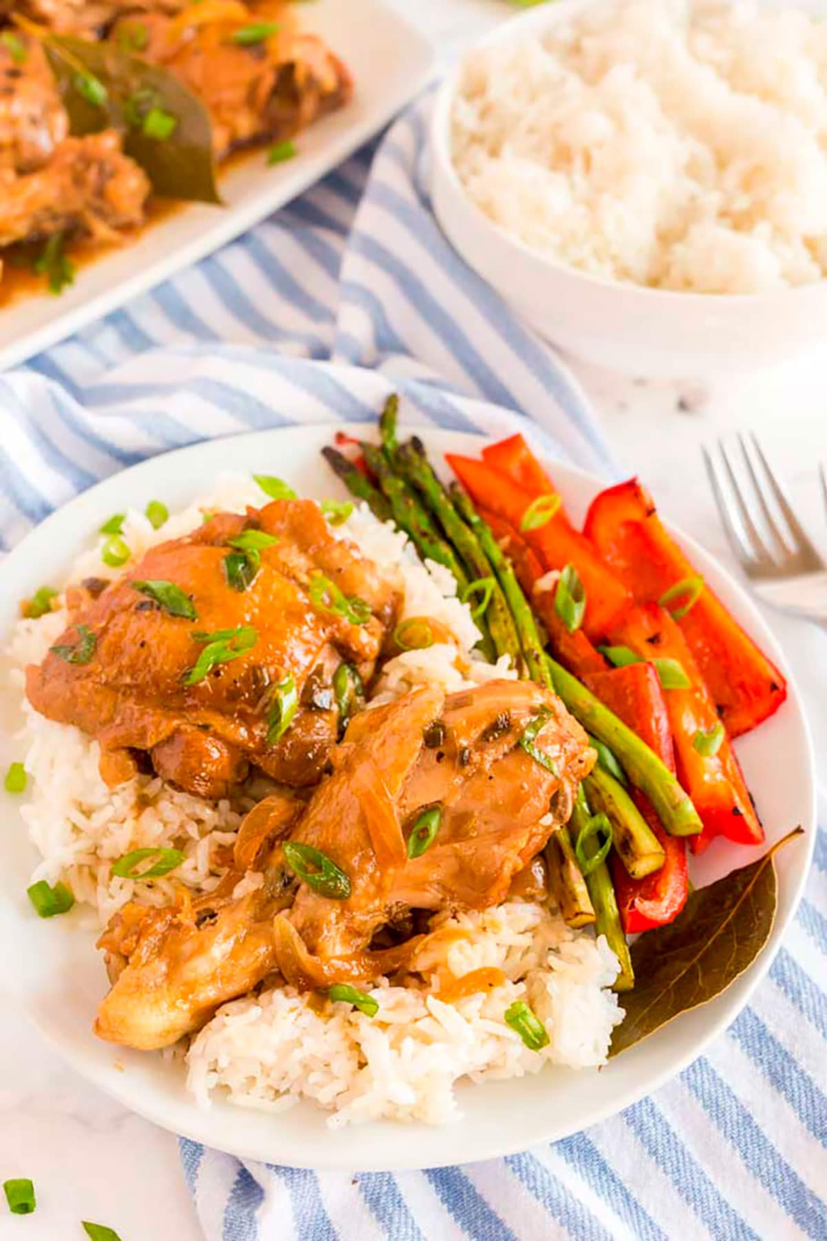 Chicken drumstick and chicken thigh adobo over rice